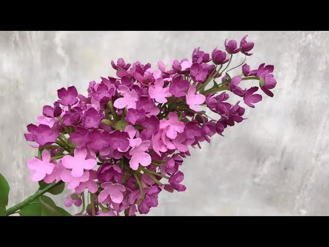 ABC TV | How To Make Lilac Paper Flower | Flower Die Cuts - Craft Tutorial