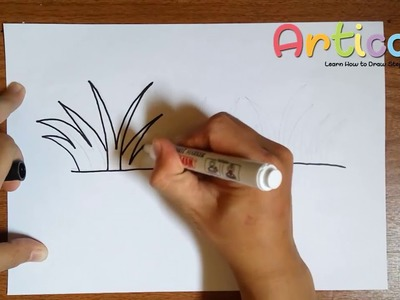 How to Draw Grass Step by Step