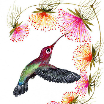 Colorful Humming Bird Cross Stitch Pattern***LOOK***  ***INSTANT DOWNLOAD***