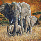 Tropical Jungle Elephant Cross Stitch Pattern***LOOK***X***DOWNLOAD***