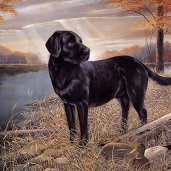 Labrador Retriever Cross Stitch Pattern***LOOK***