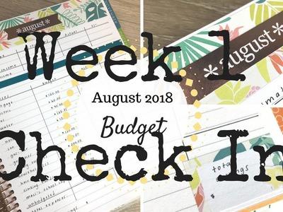 Week 1 Check In | August 2018 Budget | Erin Condren Deluxe Monthly Planner |