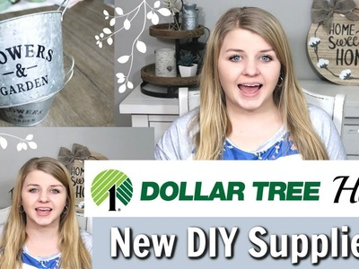 Dollar Tree DIY Supplies 2019 | Spring Dollar Tree Haul | Krafts by Katelyn
