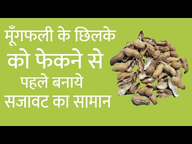 Best Out Of Waste Peanut Shell Craft | DIY Art And Craft | Peanut Shell Reuse Idea | Infoo Crafts