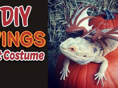 DIY Pet Costume | Felt Wings