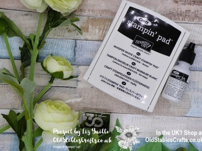 Whisper White Craft Ink from Stampin' Up! - How To