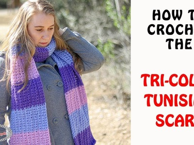 How to Crochet the TRI-COLOR TUNISIAN SCARF