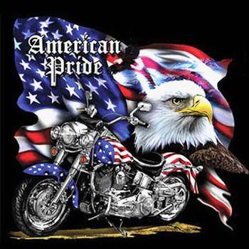 American Pride MotorCycle Cross Stitch Pattern***LOOK***