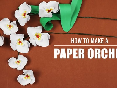 How to Make a Paper Orchid