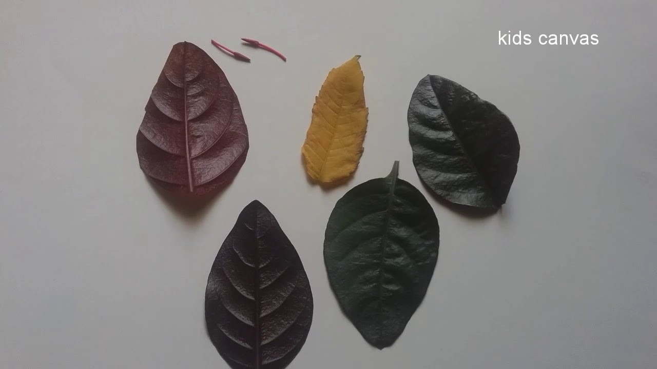 How to make beautiful butterfly with leaves, very easy and fun craft for kids