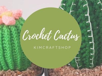 How to crochet a cactus. Home decor ideas