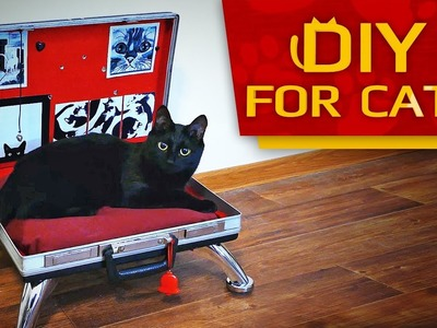 DIY - How to make Briefcase BED for CAT Easy & Fast