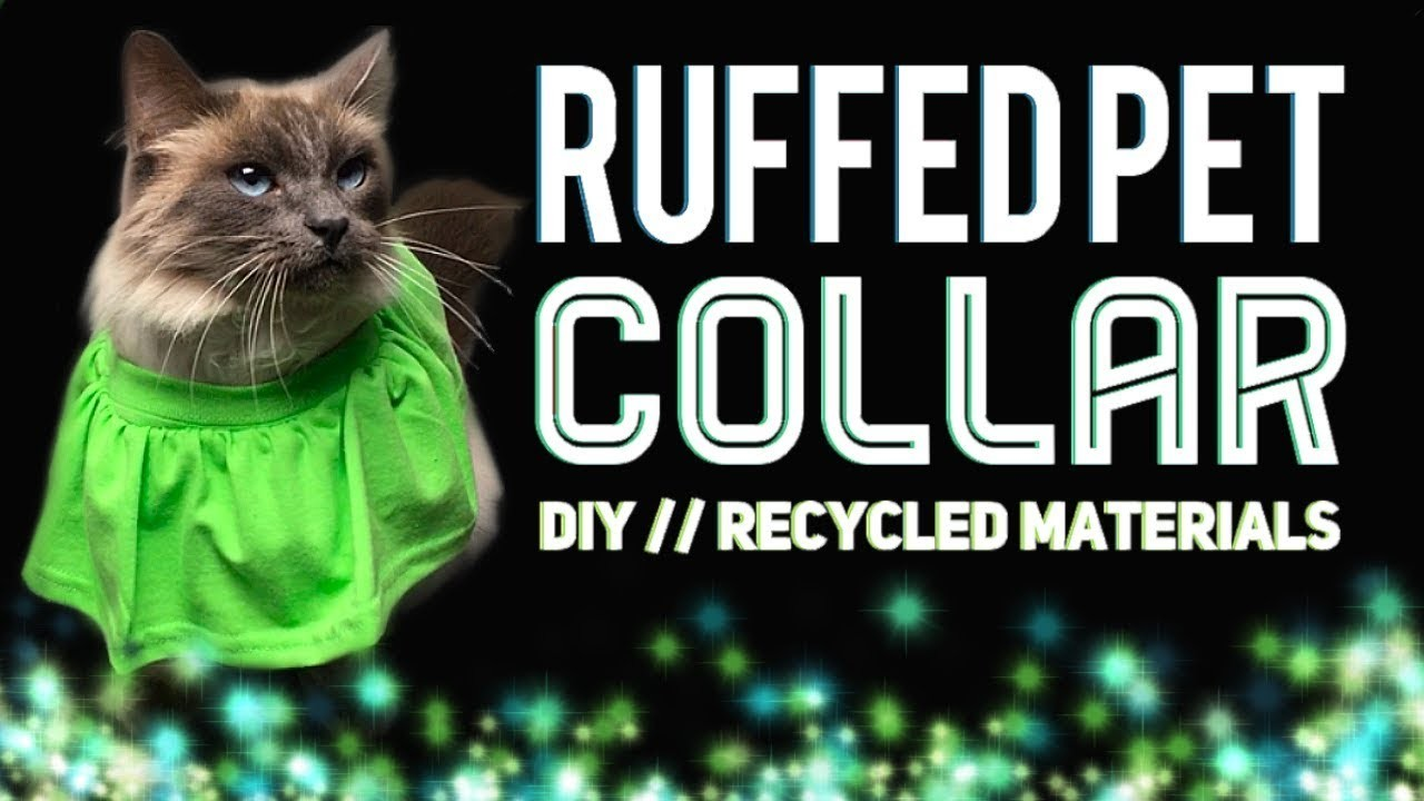 RUFFLED PET COLLAR DIY. UPCYCLING FABRIC SCRAPS