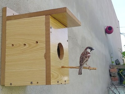 Bird Nesting Box | How To Build A Bird House Out Of plywood At Home
