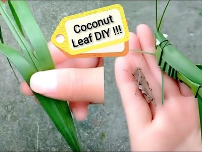 How to make a Coconut Palm Leaf Grasshopper for kids ⎮Simple Leaf creative art.craft DIY toys kids