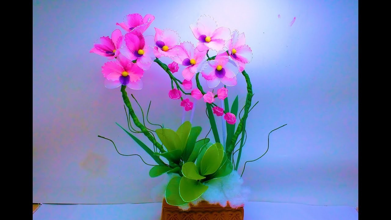 Love shape arrangement Best for Beginners DIY Orchids by TuberDiary