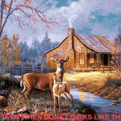 CRAFTS Natures Wonder Deer Cross Stitch Pattern***LOOK***