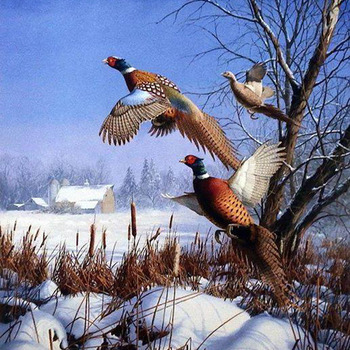 CRAFTS Pheasents In Flight Cross Stitch Pattern***LOOK***