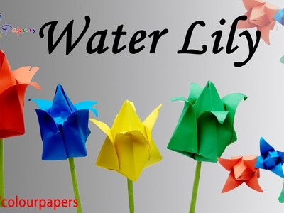 DIY - Paper Water Lily. How to Make Water Lily With  Colour Papers