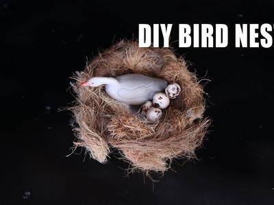 How To Make Bird Nest In few Minutes | Bird Nest House School Project | #birdnest