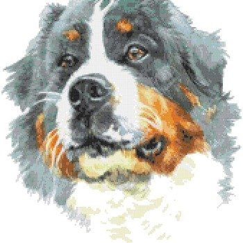 Counted Cross Stitch pattern watercolor pet dog 167 * 186 stitches CH1972