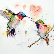 CRAFTS Humming Birds Watercolor Cross Stitch Pattern***LOOK***