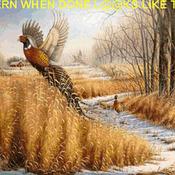 CRAFTS Pheasant Wildlife Cross Stitch Pattern***LOOK***