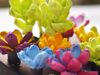 Tissue Paper Flowers How to Succulent Garden