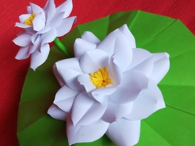 DIY | White Lotus Paper: Flower cutting and paste | papercraft | Flower projects