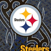 CRAFTS Pittsburgh SteeLers NFL Cross Stitch Pattern***LOOK***