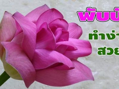 วิธีพับดอกบัวเหมือนดอกกุหลาบ#EP1