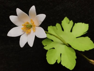 ABC TV | How To Make Bloodroot Paper Flower - Craft Tutorial
