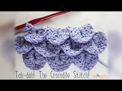 How to Crochet: Crocodile Stitch (Left Handed)