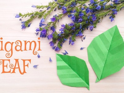 How To Make Origami Leaf - DIY