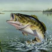 CRAFTS Large Mouth Bass Cross titch Pattern***L@@K***