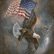 CRAFTS Soaring Over America Cross Stitch Pattern***LOOK***Buyers Can Download Your Pattern As Soon As They Complete The Purchase