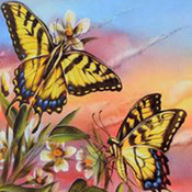 ( CRAFTS ) Tiger Swallowtail Cross Stitch Pattern***L@@K***Buyers Can Download Your Pattern As Soon As They Complete The Purchase