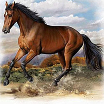 CRAFTS American Quarter Horse Cross Stitch Pattern***L@@K***
