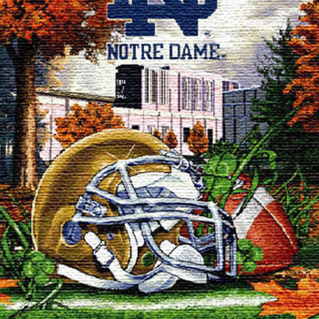 CRAFTS Notre Dame Fighting Irish Cross Stitch Pattern***L@@K***$4.95***