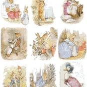 Counted cross Stitch Pattern nine beatrix potter world 287 *350 stitches CH1480