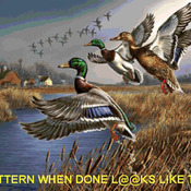 CRAFTS Outback Mallards Cross Stitch Pattern***L@@K***