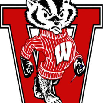 CRAFTS Wisconsin Badger Cross Stitch Pattern***L@@K***