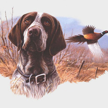 Field Hunt Dog Cross Stitch Pattern***L@@K***$4.95***