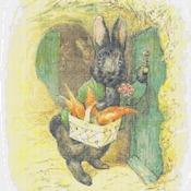 counted cross stitch pattern rabbit potter pdf 193*255 stitches CH1836