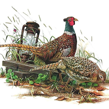 Ring Necked Pheasant Cross Stitch Pattern***LOOK***X ***INSTANT DOWNLOAD***