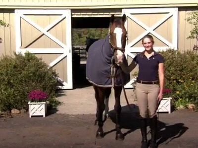 How To Blanket Your Horse
