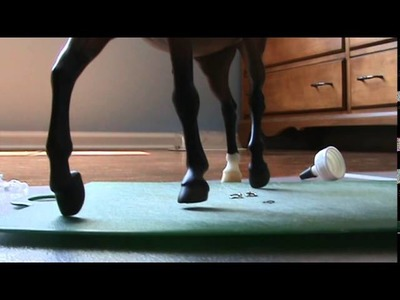 How to Make a Breyer Western Bridle