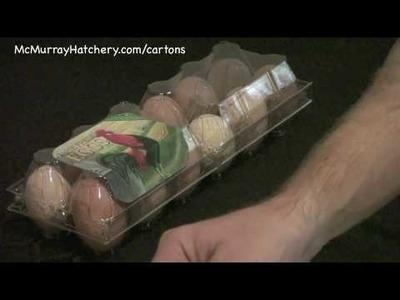 Clear Egg Carton