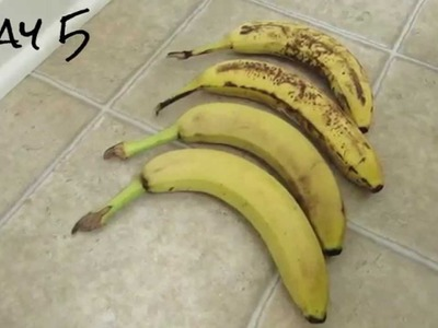 How I Keep Bananas Fresh Longer