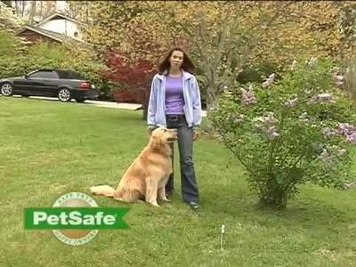 PetSafe® Training Your Dog: PetSafe Containment System - www.petsafe.net